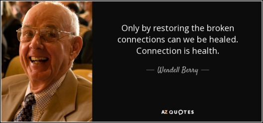 quote-only-by-restoring-the-broken-connections-can-we-be-healed-connection-is-health-wendell-berry-87-40-31-1.jpg